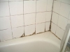 shower-tile-mold-2_resized1