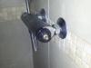 tap131